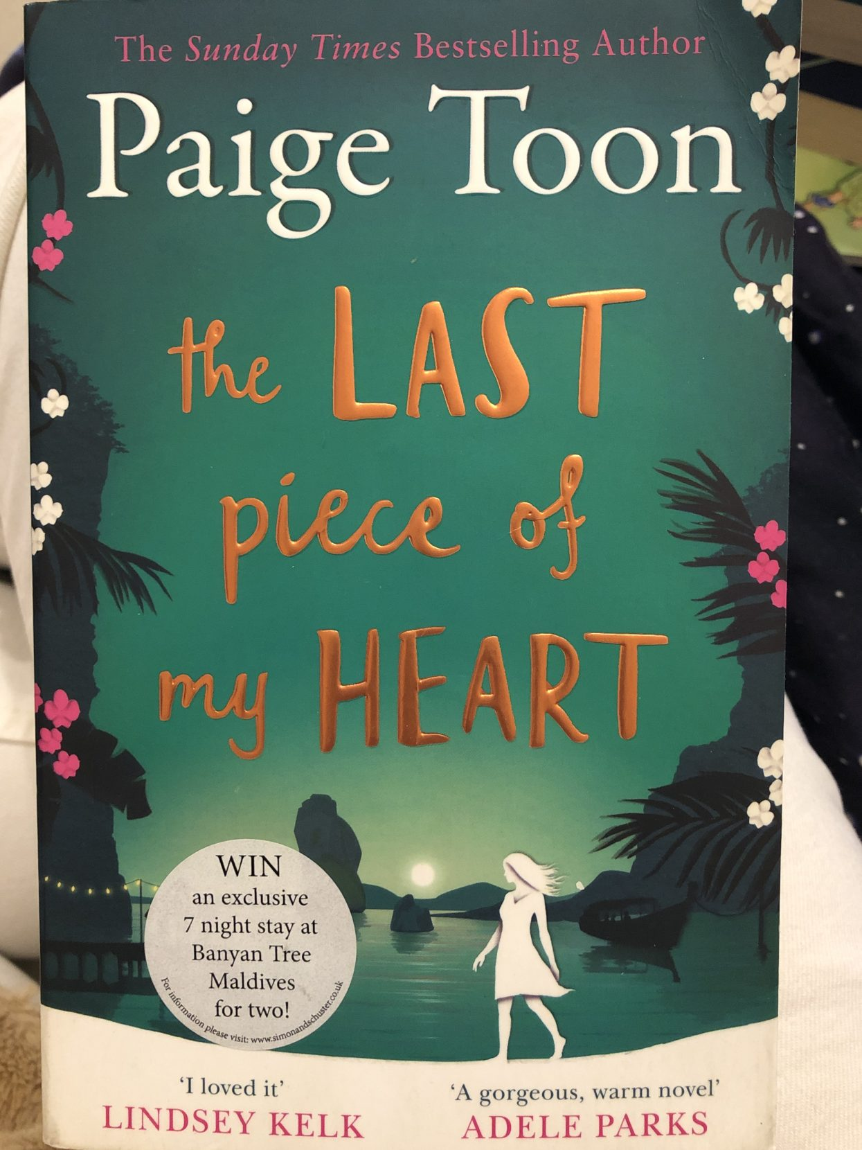 The last piece of my heart book